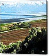 Antelope Island Wasatch Mountains Utah Acrylic Print