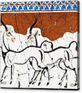 Antelope Of Akrotiri - Study No. 2 Acrylic Print