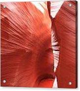 Antelope Passage Acrylic Print