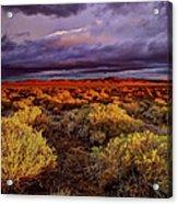Antelope Valley Acrylic Print