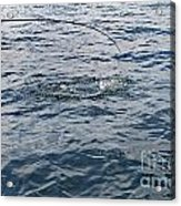 Anticapation Of The Unknown Acrylic Print