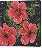 Antique Hibiscus Black 3 Acrylic Print by Debbie DeWitt