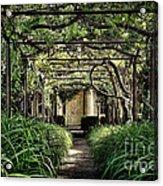 Antique Pergola Arbor Acrylic Print