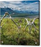 Antlers On The Hill Acrylic Print