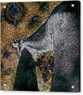 Aphrodite Holds Council With The Pleiades Acrylic Print by Nova Cynthia Barker