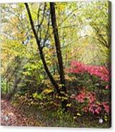 Appalachian Mountain Trail Acrylic Print