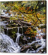 Appalachian Mountain Waterfall Acrylic Print