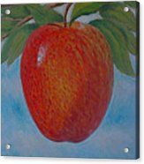 Apple 1 In A Series Of 3 Acrylic Print by Don Young