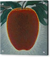 Apple 2 In A Series Of 3 Acrylic Print