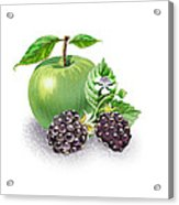 Apple And Blackberries Acrylic Print