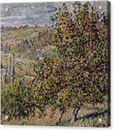 Apple Blossom Acrylic Print by Claude Monet