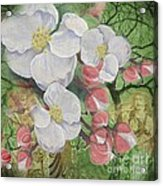 Apple Blossom Collage Acrylic Print