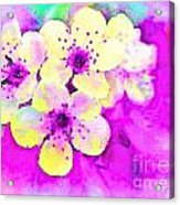 Apple Blossoms In Magenta -  Digital Paint Acrylic Print
