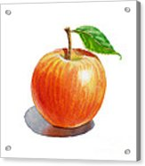 Artz Vitamins Series An Apple Acrylic Print