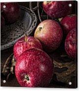 Apple Still Life Acrylic Print