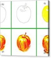 Apple Study Acrylic Print