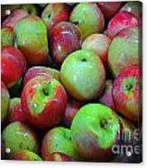 Apples Apples And More Apples Acrylic Print