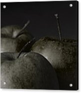 Apples Noir Acrylic Print