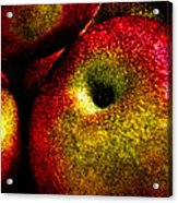 Apples Two Acrylic Print by Bob Orsillo