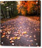 Approaching Autumn Acrylic Print
