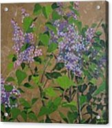 April Lilacs Acrylic Print