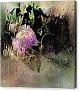 April Showers Acrylic Print