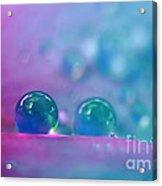 Aqua Blue Water Droplets Acrylic Print