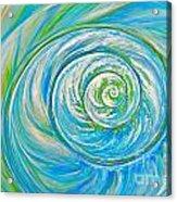 Aqua Seashell Acrylic Print