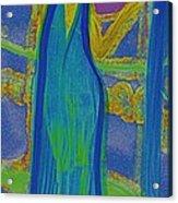 Aquarius By Jrr Acrylic Print by First Star Art