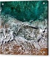 Aquatic Acrylic Print