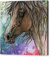 Arabian Horse And Burst Of Colors Acrylic Print