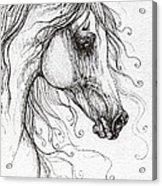 Arabian Horse Drawing 48 Acrylic Print