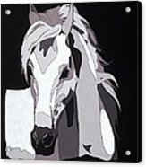 Arabian Horse With Hidden Picture Acrylic Print