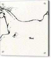 Arabian Horse Sketch 2014 05 24 C Acrylic Print
