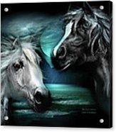 Arabian Moon Acrylic Print