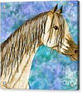 Arabian Sketch  Digital Effect Acrylic Print