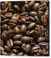 Arabica Beans Acrylic Print
