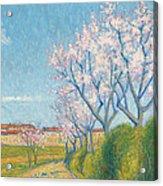 Arbes En Fleurs A L'entree De Cailhavel Acrylic Print