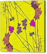 Arbor Autumn Harmony 12 Acrylic Print