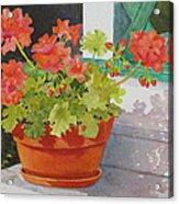 Arbor Gallery Steps Acrylic Print by Mary Ellen Mueller Legault