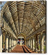 Arbor In Boston Acrylic Print