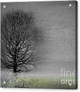 Arbrensens - V06gr Acrylic Print