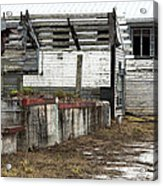 Arcadia Florida State Livestock Market I Poster Look Acrylic Print