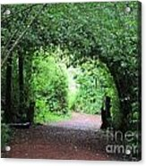 Arched Pathway Acrylic Print by Melissa Stinson-Borg