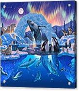 Arctic Harmony Acrylic Print
