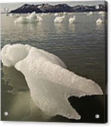 Arctic Ice Floe Acrylic Print