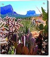 Arizona Bell Rock Valley N4 Acrylic Print