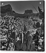 Arizona Bell Rock Valley N6 Acrylic Print