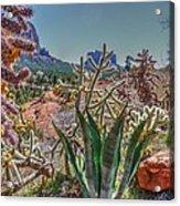 Arizona Bell Rock Valley N7 Acrylic Print