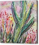 Arizona Desert Acrylic Print by M C Sturman